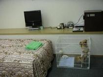 客室のハニーPART2