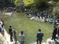 犬鳴山温泉まつり(ますの放流)