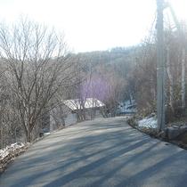 *[周辺]当館前の道路