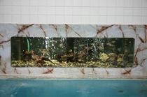 和陽館大風呂水槽