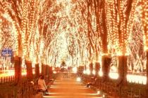 煌めく夜の仙台♪