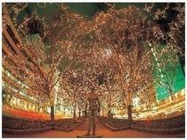仙台の冬の風物詩『光のページェント』
