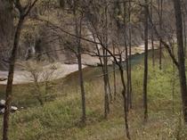 和室7.5畳からの眺望(渓谷沿いの新緑が美しい春)