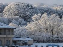 洋室タイプからの眺望(一面が銀世界になった冬の朝)