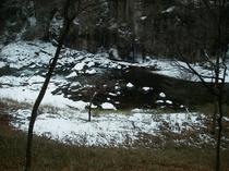 和室7.5畳からの眺望(雪化粧した渓谷が美しい冬)