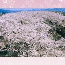 御津山展望台