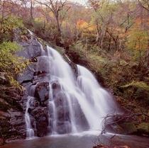 秋の神鍋高原5