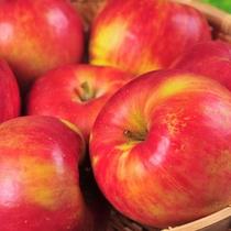 秋の大収穫祭≪りんご≫