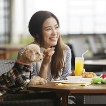 テラスで愛犬と朝食
