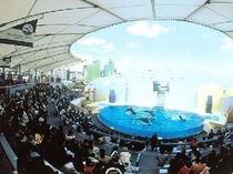 須磨海浜水族館