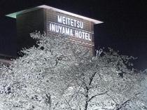 夜桜と名鉄犬山ホテル