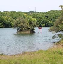 一碧湖初夏3