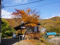 ソネットの秋