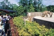 石川動物園、ホテルから車で25分