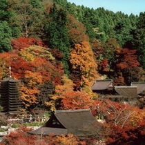談山神社(紅葉イメージ)