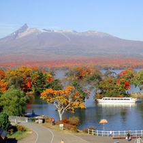 【大沼】大沼公園の紅葉