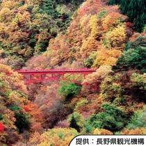 【松川渓谷】紅葉目安10月中旬~下旬頃・ホテルから車約60分です。