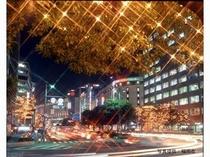 クリスマスイルミネーション(天神)