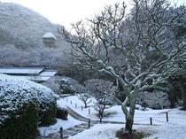 【冬慧洲園】雪の慧洲園