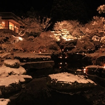 中庭雪のライトアップ3