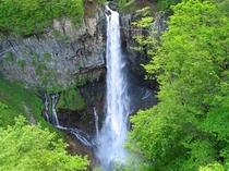 華厳の滝(新緑の頃)