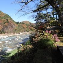 すぐ下を流れる鬼怒川は、水が透けるほどキレイ!