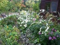 ペンション秋の庭