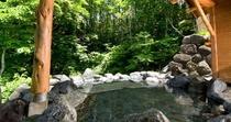 【春】お風呂メイン百景花