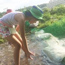 【夏】《イベント》魚のつかみどり体験