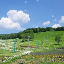 【春夏】ホテルサンバードの魅力は何といってもこの広大な高原庭園