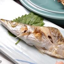 *お夕食一例(かます)/一番おいしい食べ方は塩焼き!身がふっくらしていて美味しいです。