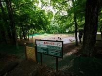 森のドッグガーデン