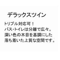 【デラックスツイン】