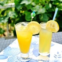 伊豆名産ニューサマーオレンジを使ったオリジナルカクテルが人気