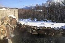雪見露天風呂N1
