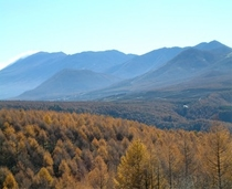紅葉と浅間山