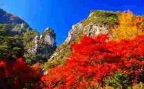 紅葉に染まる『昇仙峡』