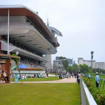 JRA函館競馬場(唯一海が見える競馬場です)