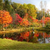 福原山荘内の紅葉。ホテル福原より車で約20分
