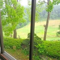 *【館内】窓からも緑豊かな景色をご覧いただけます。