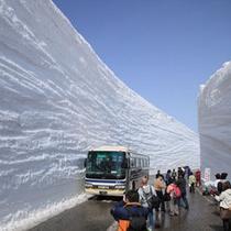 【周辺観光】立山黒部アルペンルート・雪の大谷