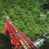 【周辺観光】黒部峡谷トロッコ電車・新緑