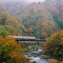 日本一ともいわれるローカル列車岩泉線