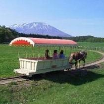 小岩井農場・トロ馬車イメージ