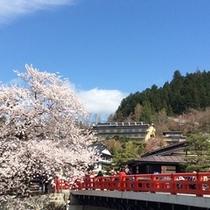 春、赤い中橋と宝生閣