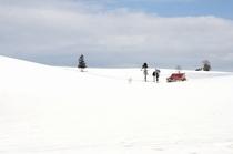 冬のメルヘンの丘