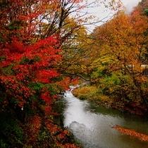 紅葉の蛇喰渓谷 (車約10分)