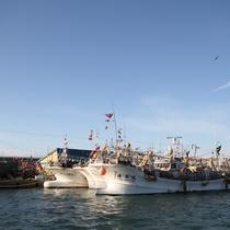 浦河港の風景