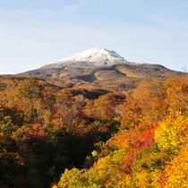 *【鳥海山・紅葉】鳥海ブルーラインをドライブしながら見る紅葉もおすすめ。