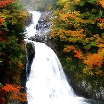 *【法体の滝・紅葉】秋の紅葉は見事で、紅葉まつりも開催されます。